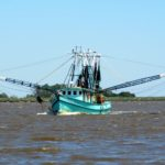 Shrimp fishing is a way of life here